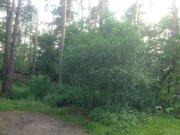 Продается уникальный лесной участок 12 сот. правильной формы в Кратово - Фото 4