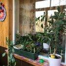 Продается 3-комнатная квартира ул.Днепропетровская Супер цена 3380000, Купить квартиру в Нижнем Новгороде по недорогой цене, ID объекта - 314919258 - Фото 9