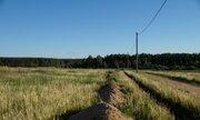 Земельный участок площадью 188 соток д. Черелисино - Фото 3