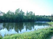 Продаётся земельный участок 24 сотки д. матрёнино, Волоколамского района - Фото 4