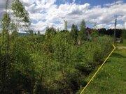 Земельный участок 12 соток в СНТ «русь» вблизи д. Бельское - Фото 5