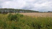 Лот: в95 Продажа земельного участка в Истринском районе - Фото 3
