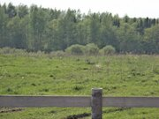 Земельный участок 30 соток в Переславском районе, с.Ефимьево - Фото 1
