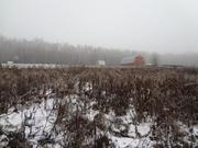 Участок 7 соток Достоевское лесничество - Фото 5