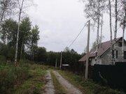 Участок 15с под ПМЖ в Сергейково, свет, тихо, лес, 50 км от МКАД - Фото 4