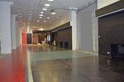 Аренда универсального (торгового) помещения, в тк «Светлановский». - Фото 3