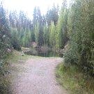 Красивый участок с выходом в лес, старый домик в подарок. - Фото 3