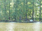 Участок 9 соток возле леса и воды 52 км от МКАД в красивом месте - Фото 2