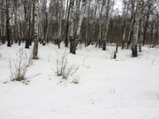 14 соток г. Чехов - Фото 3