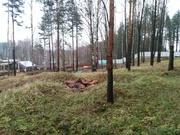 Земельный участок 45 соток ИЖС Воейково - Фото 2