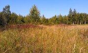 15 соток в д. Скулино в 300 м. от залива реки Волга - Фото 5