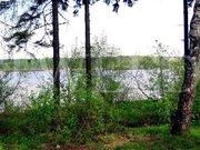 """26 соток в кп """"Нэмо"""" на берегу Икшинского водохранилища - Фото 4"""