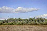 Участок у Можайского водохранилища - Фото 2