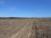Продается земельный участок 25 сот. в д. Муромцево - Фото 4