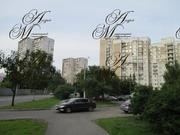 Однокомнатная Ореховый пр-д. д.11 - Фото 1