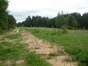 Продается участок 43 сотки в деревне Высокиничи Калужской области Жуко - Фото 3