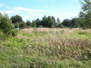 Продается большой участок зем.в деревне Барынино Рузский р. - Фото 2