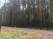 Валуево 10.5 соток ИЖС - Фото 3