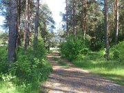 Участок в д. Дубки Киржачского района 70 км от МКАД - Фото 3