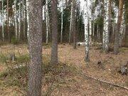 Земельный участок, 24 сотки, ИЖС, г. Черноголовка, мкр. Луговой. - Фото 2