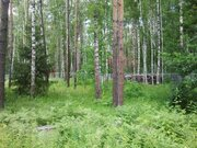 Лесной участок 13 соток в пос. Самар-1, Раменский район 40 км от МКАД - Фото 1
