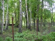 Участок в Переделкино - Фото 5