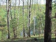 Продается зеемльный участок в д. Бебехово Озерского района - Фото 4