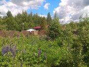 """Продаётся дачный участок с садовым домиком ст """"Полянка"""" - Фото 4"""