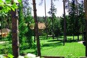 Лесной участок на Новой риге, кп Балтия, 40 соток - Фото 4