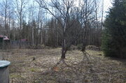 Дача рядом с лесом - Фото 3