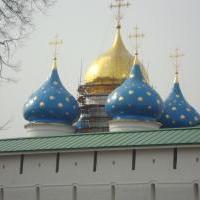 Елисеев Дмитрий Владимирович