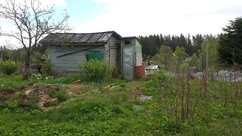 нужна продажа в садоводстве балтиец бизнес очень перспективен,ведь
