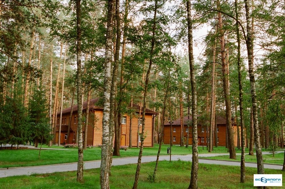 Дома отдыха и санатории в подмосковье недорого