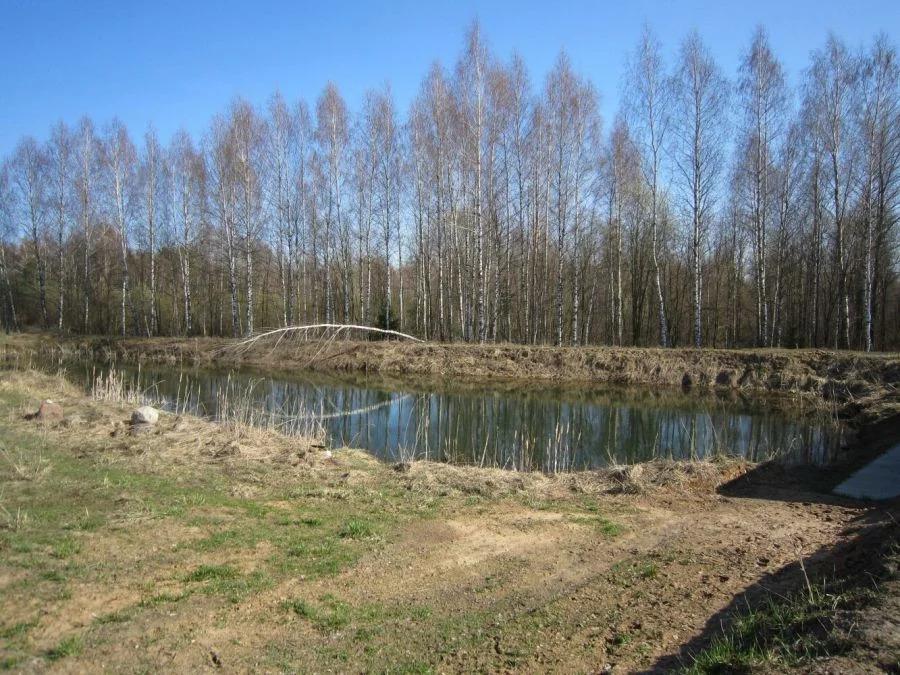 Тверская область, Конаковский район, Дулово, нет, 97