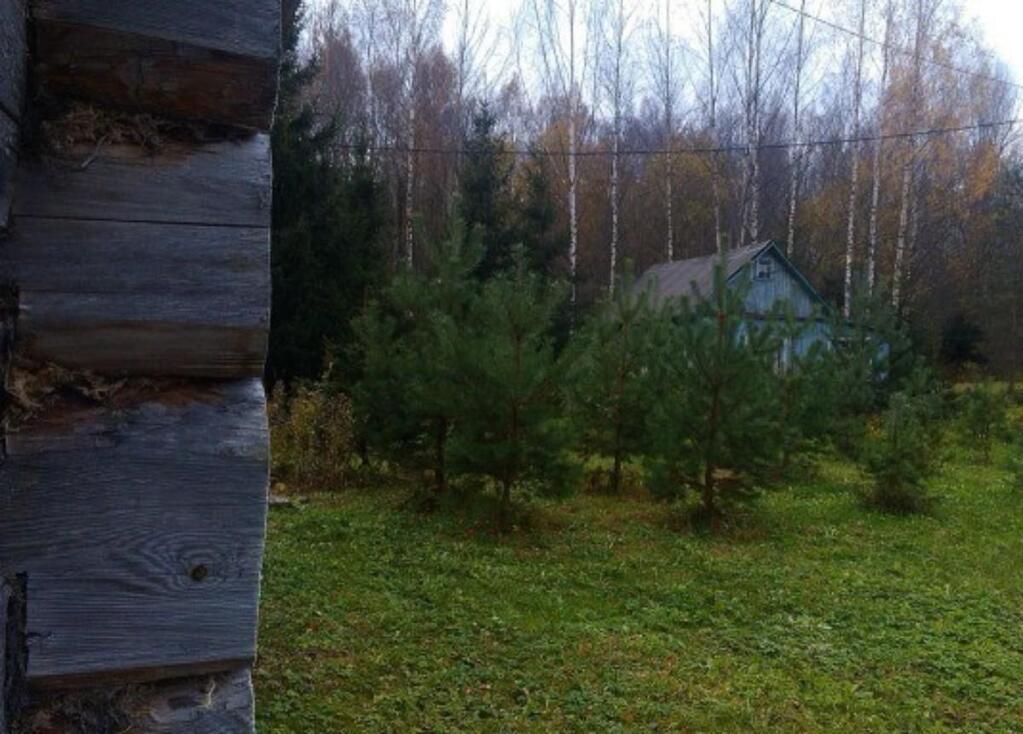 некоторых старых купить дом в новгородском районе великий новгород суде решение обжалуемой
