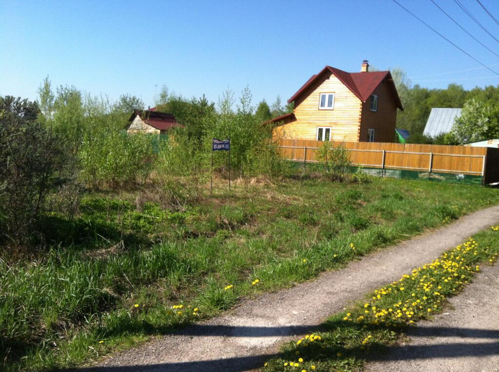 Buy land in Orbetello
