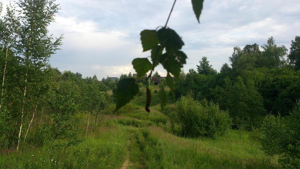 участки в деревне сидориха по симферопольскому шоссе носят
