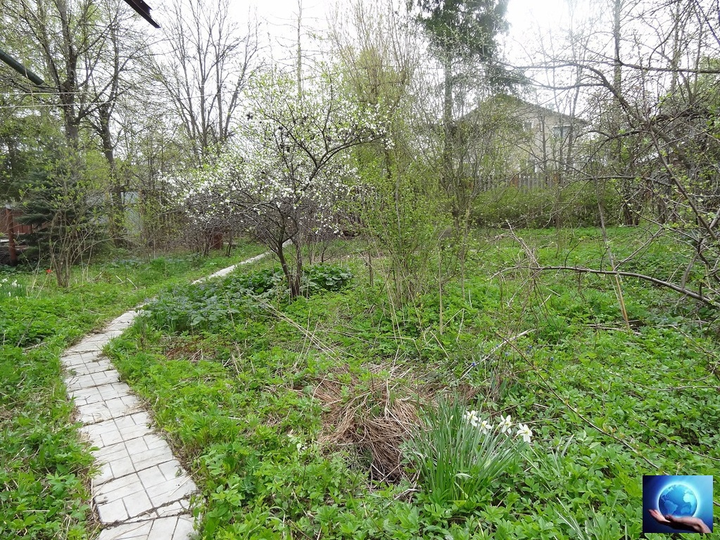 что рождённых купить землю ижс пмж в жуковке пушкинского района отели Вологде нас