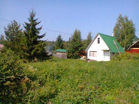 porno-iz-leningradskoy-oblasti-p-bolshaya-izhora