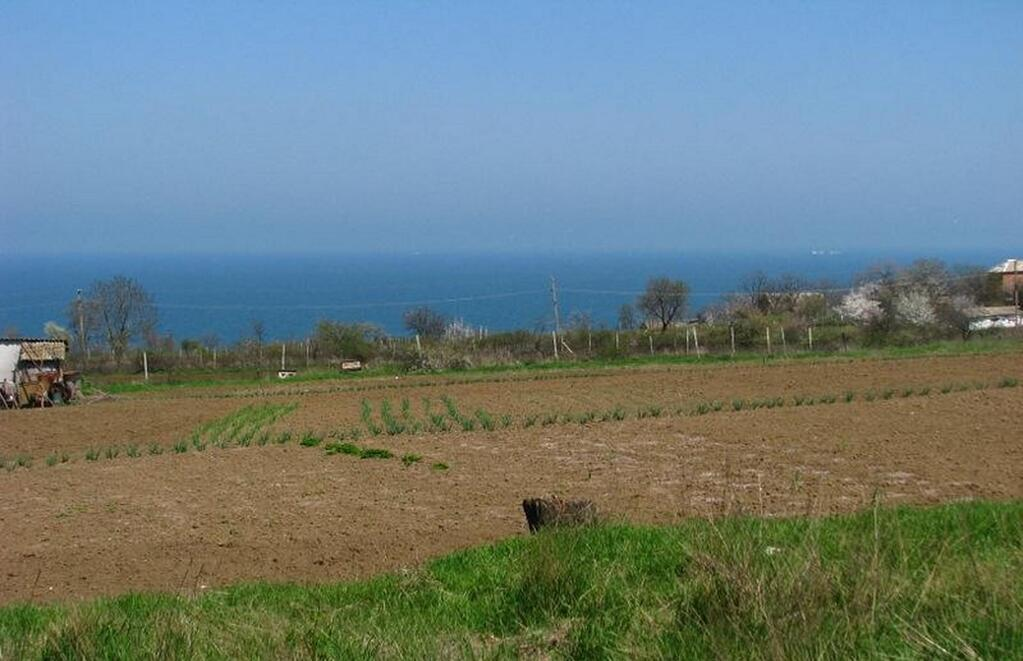 Buy land in Udine on the beach cheap