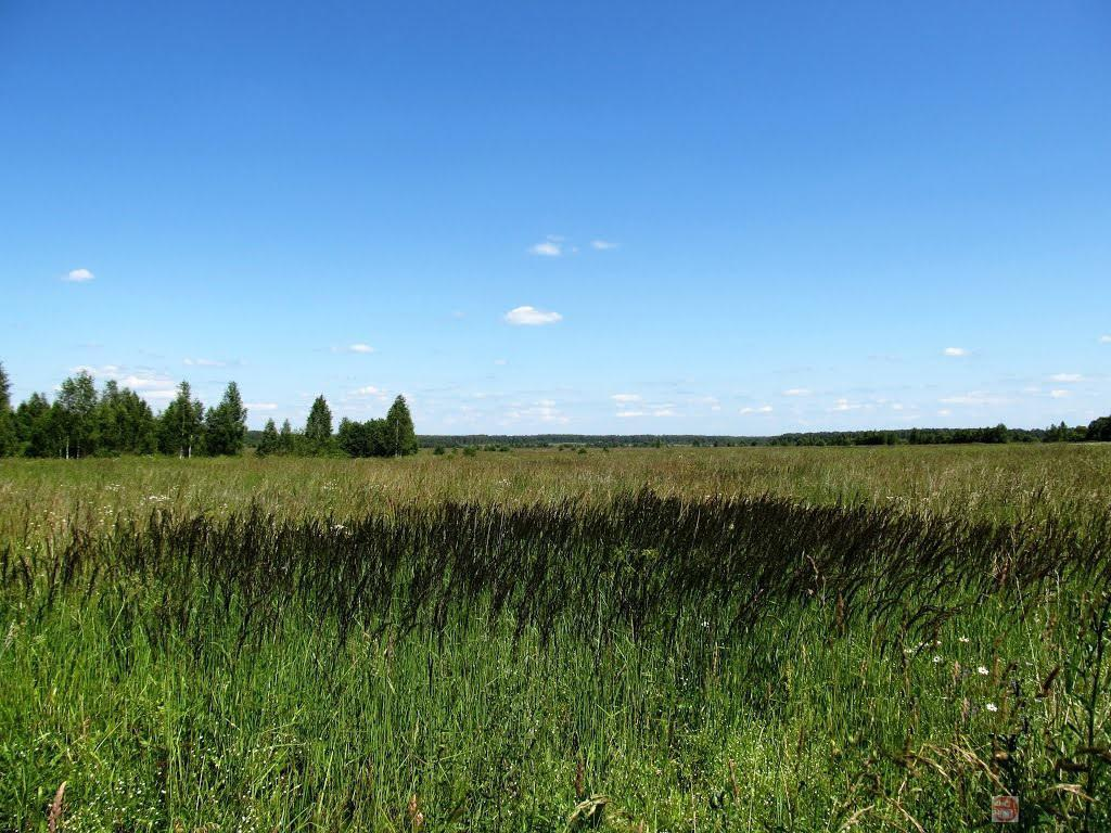термобелье Редфокс тверская область кимрский район бункер полностью…