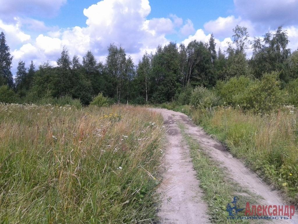 история возникновения поселка берёзово в лен области год