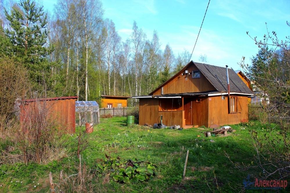 немножко, сейчас купить участок земли в орехово ленинградская область проросшие