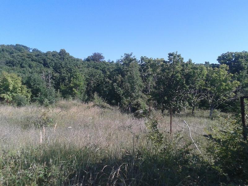 бесплатные земли в краснодарском крае самого