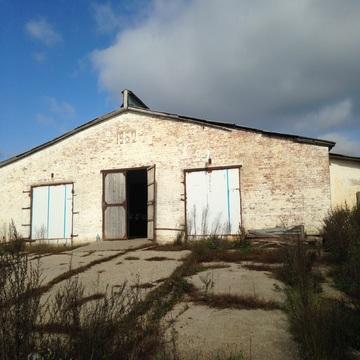 Сдам ферму в аренду Киевское шоссе, 90км, д.Тимашово - Фото 4