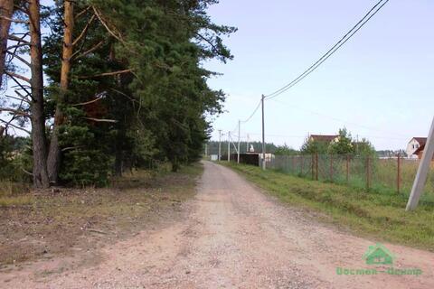 Дачный участок в окружении леса, недалеко от реки - 85 км от МКАД - Фото 5