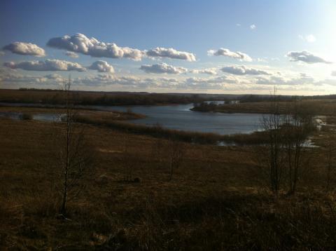 Земельный участок на берегу озера, ИЖС, рядом лес - Фото 4