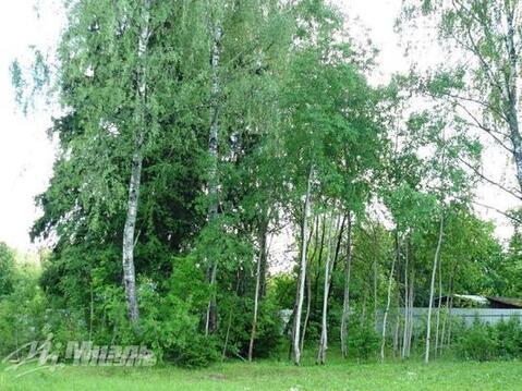 Продается участок, Правдинский рп. - Фото 2