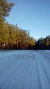 Продажа участка, Боровое, Новосибирский район, Боровое- 2 - Фото 2