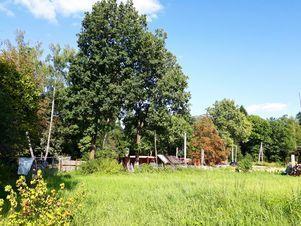 Продажа участка, Тучково, Рузский район, Ул. Даниловка - Фото 1